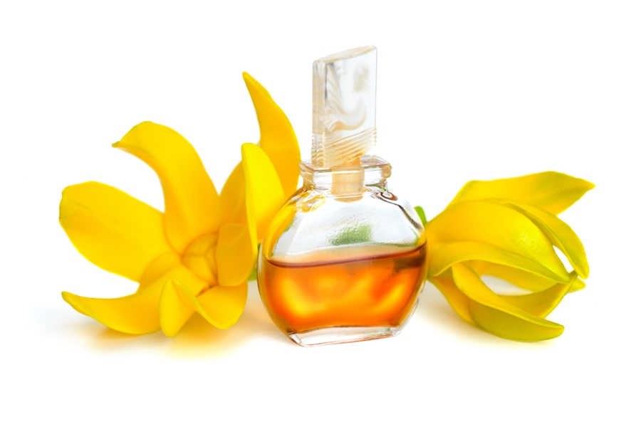 Buy Essential Oils In India Online To Improve Your Health