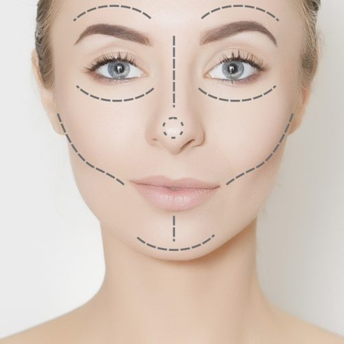 Elements Of Argument In A Research Paper Against Plastic Surgery