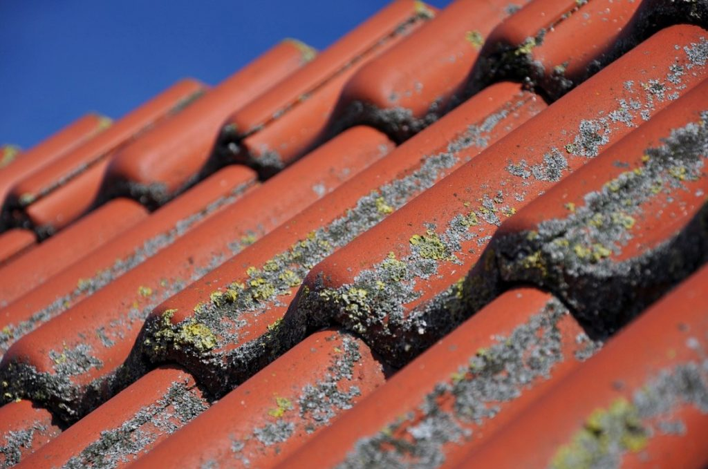 4 Types Of Roof Damage That Could Result In Health Risks For Your Family