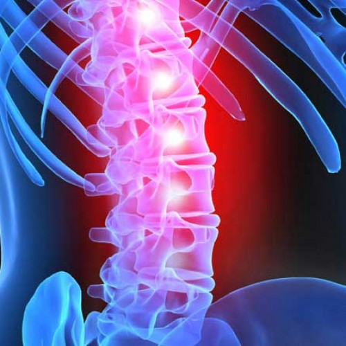 You Need The Right Therapy To Help You With Your Spinal-Cord Pain
