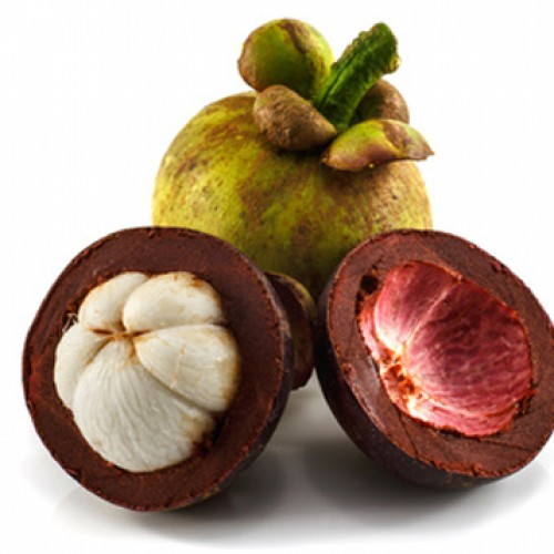 Garcinia Cambogia – Know The Ingredients And More