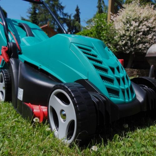 What Equipment You Need For DIY Lawn Care