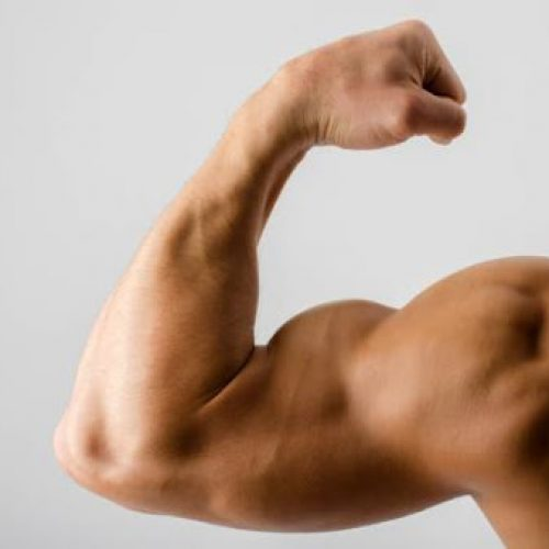 This Is How To Get Bigger Arm Muscles